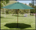 Where to rent UMBRELLA, MARKET, GREEN, 9 in Concord CA