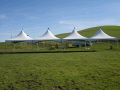Rental store for TENT, 20 X80 , MARQUEE, WHITE in Concord CA